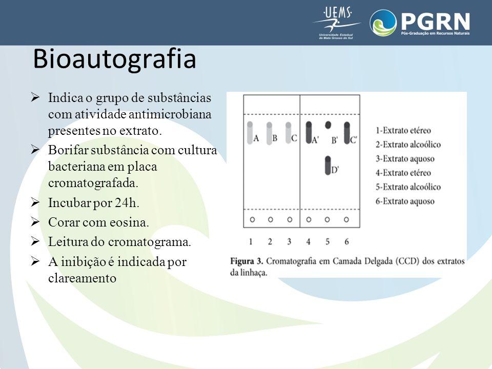  Indica o grupo de substâncias com atividade antimicrobiana presentes no extrato.  Borifar substância com cultura bacteriana em placa cromatografada
