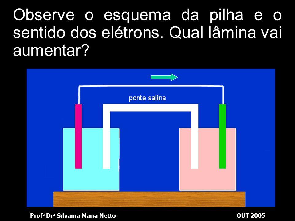 Prof a Dr a Silvania Maria NettoOUT 2005 Observe o esquema da pilha e o sentido dos elétrons. Que solução se dilui?