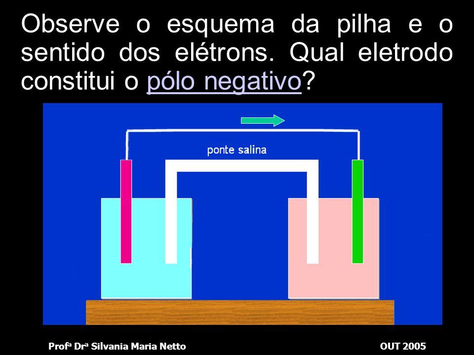 Prof a Dr a Silvania Maria NettoOUT 2005 Observe o esquema da pilha e o sentido dos elétrons. Qual lâmina vai diminuir?