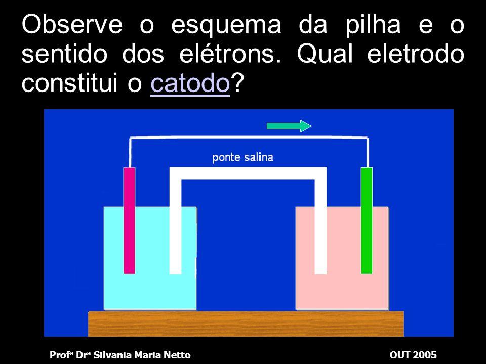 Prof a Dr a Silvania Maria NettoOUT 2005 Observe o esquema da pilha e o sentido dos elétrons. Qual lâmina vai aumentar?