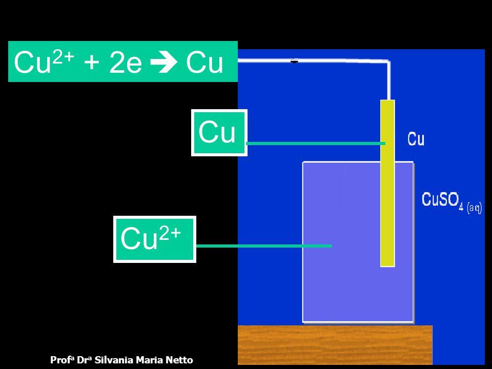 Prof a Dr a Silvania Maria NettoOUT 2005 Os elétrons que chegam à barra metálica do catodo, proveniente da barra metálica do anodo, atraem os íons exi
