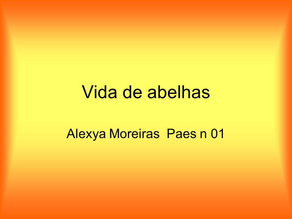 Vida de abelhas Alexya Moreiras Paes n 01