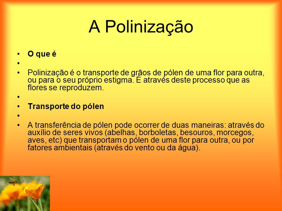 A Polinização O que é Polinização é o transporte de grãos de pólen de uma flor para outra, ou para o seu próprio estigma. É através deste processo que