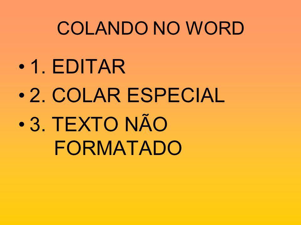 COLANDO NO WORD 1. EDITAR 2. COLAR ESPECIAL 3. TEXTO NÃO FORMATADO