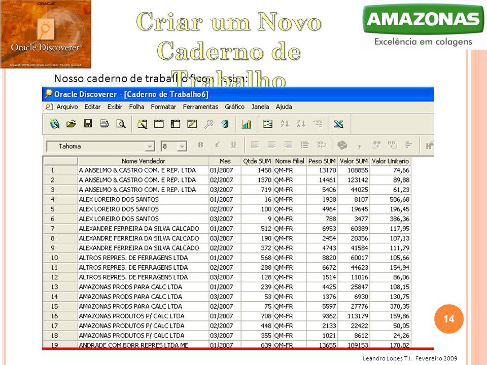 Leandro Lopes T.I. Fevereiro 2009 Nosso caderno de trabalho ficou assim: 14