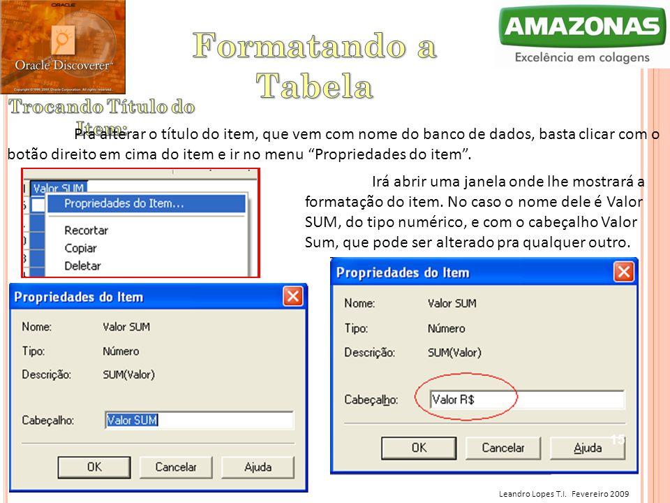 Leandro Lopes T.I. Fevereiro 2009 Pra alterar o título do item, que vem com nome do banco de dados, basta clicar com o botão direito em cima do item e