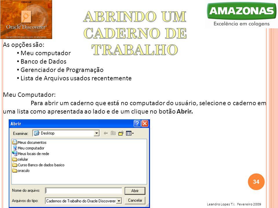 Leandro Lopes T.I. Fevereiro 2009 As opções são: Meu computador Banco de Dados Gerenciador de Programação Lista de Arquivos usados recentemente Meu Co
