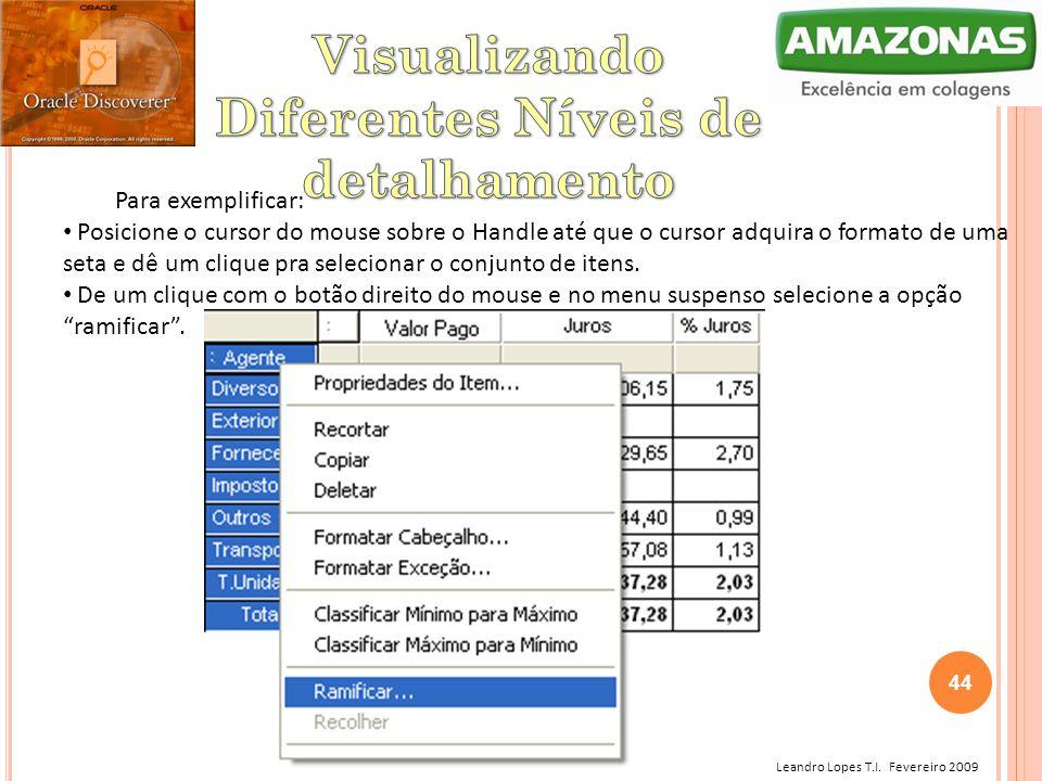 Leandro Lopes T.I. Fevereiro 2009 Para exemplificar: Posicione o cursor do mouse sobre o Handle até que o cursor adquira o formato de uma seta e dê um