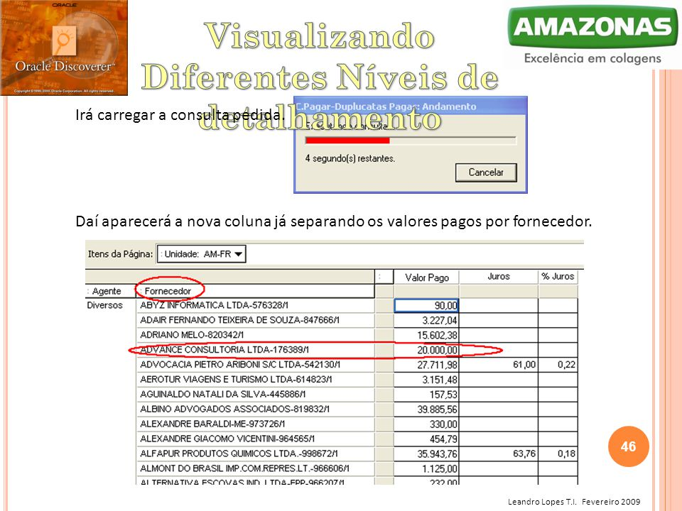 Leandro Lopes T.I. Fevereiro 2009 Irá carregar a consulta pedida. Daí aparecerá a nova coluna já separando os valores pagos por fornecedor. 46