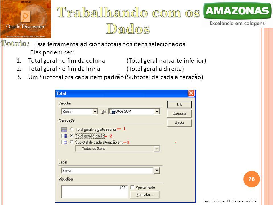Leandro Lopes T.I. Fevereiro 2009 Essa ferramenta adiciona totais nos itens selecionados. Eles podem ser: 1. Total geral no fim da coluna (Total geral