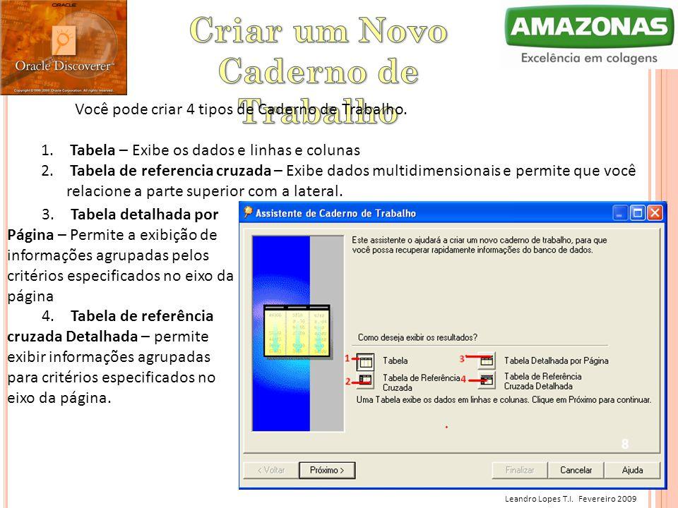 Leandro Lopes T.I. Fevereiro 2009 Você pode criar 4 tipos de Caderno de Trabalho. 1. Tabela – Exibe os dados e linhas e colunas 2. Tabela de referenci