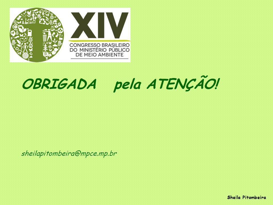 Sheila Pitombeira OBRIGADA pela ATENÇÃO! sheilapitombeira@mpce.mp.br