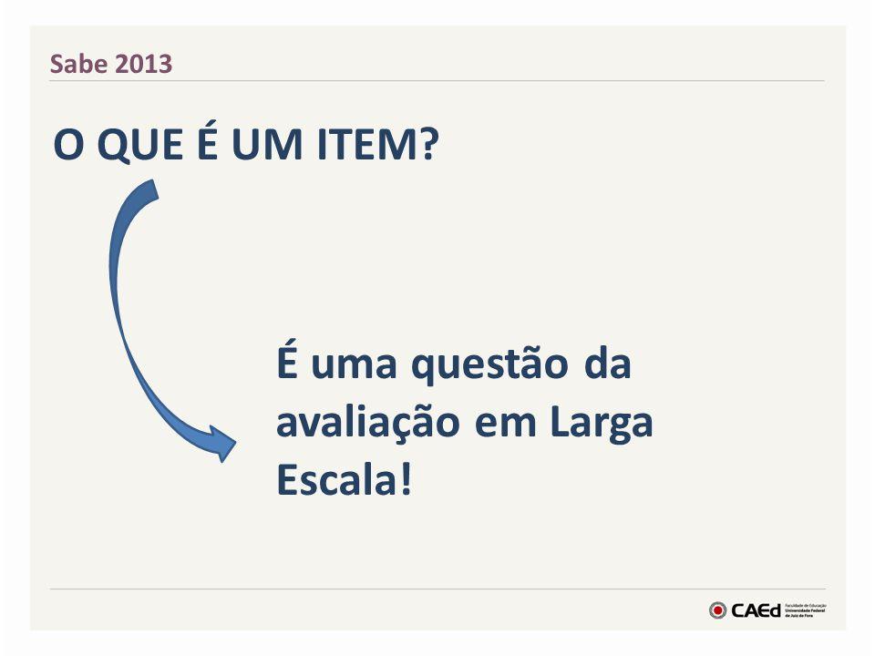 Sabe 2013 O QUE É UM ITEM? É uma questão da avaliação em Larga Escala!