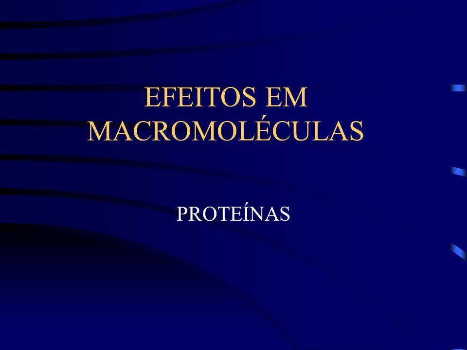 EFEITOS EM MACROMOLÉCULAS PROTEÍNAS