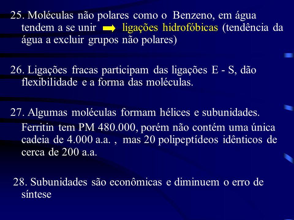25. Moléculas não polares como o Benzeno, em água tendem a se unir ligações hidrofóbicas (tendência da água a excluir grupos não polares) 26. Ligações