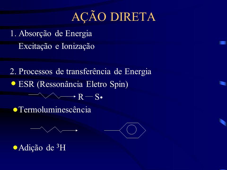 AÇÃO DIRETA 1.Absorção de Energia Excitação e Ionização 2.