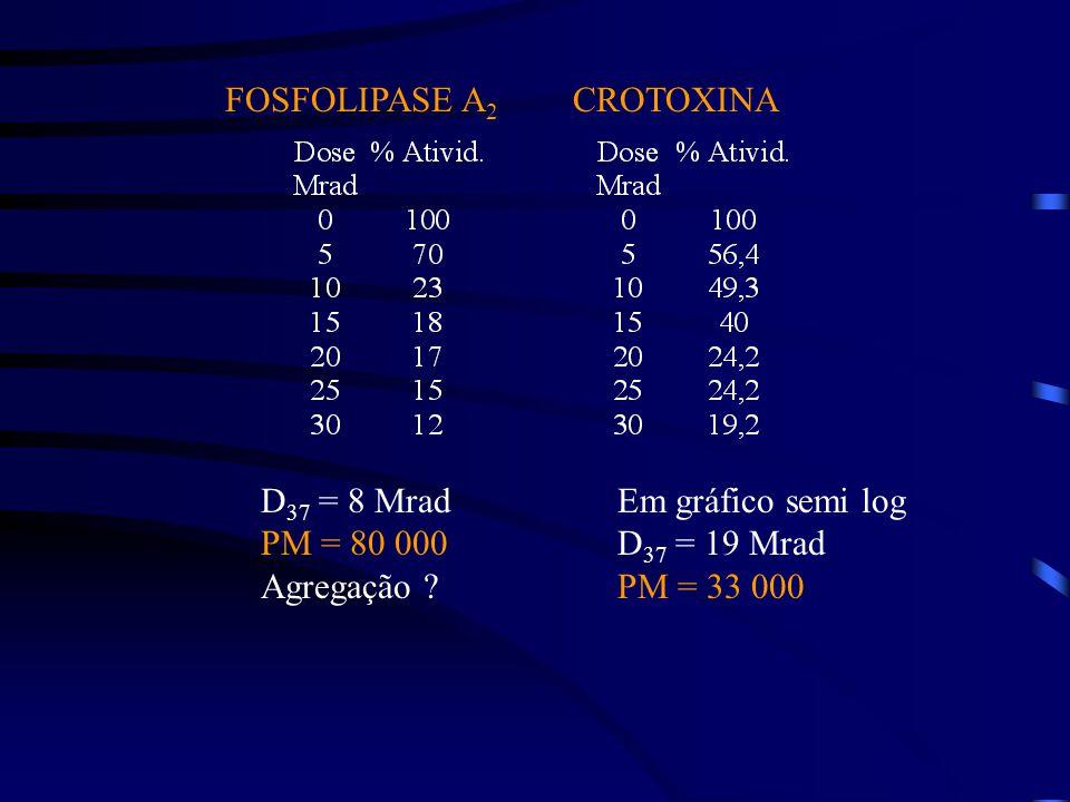 FOSFOLIPASE A 2 CROTOXINA D 37 = 8 Mrad PM = 80 000 Agregação .