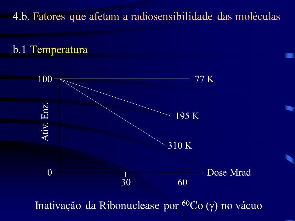 4.b. Fatores que afetam a radiosensibilidade das moléculas b.1 Temperatura 0 100 3060 Dose Mrad Ativ. Enz. 310 K 195 K 77 K Inativação da Ribonuclease