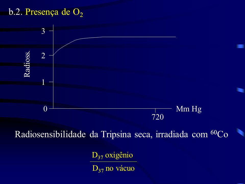 b.2.Presença de O 2 0 3 720 Mm Hg Radioss.
