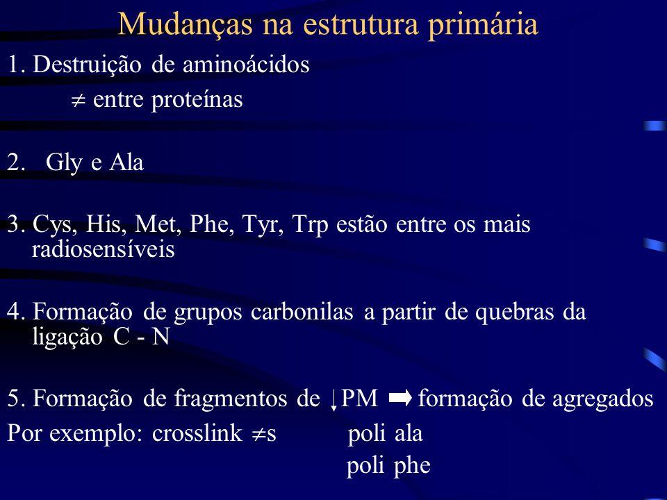 Mudanças na estrutura primária 1.Destruição de aminoácidos  entre proteínas 2.