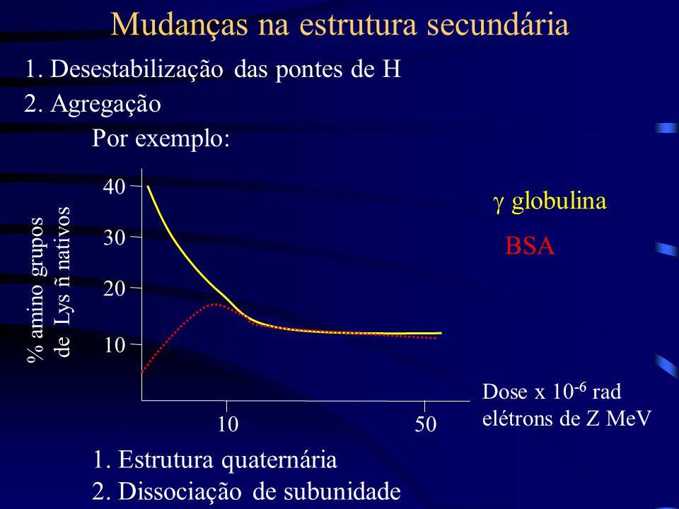 Mudanças na estrutura secundária 1.Desestabilização das pontes de H 2.