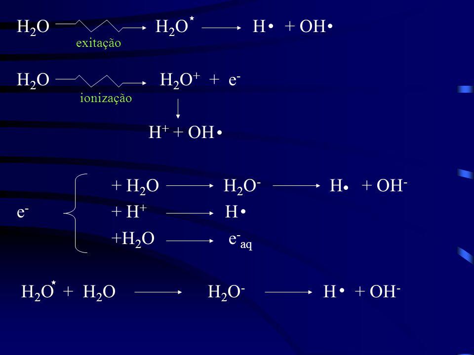 H 2 O H 2 O H + OH H 2 O H 2 O + + e - H + + OH + H 2 O H 2 O - H + OH - e - + H + H +H 2 O e - aq H 2 O + H 2 O H 2 O - H + OH - exitação ionização