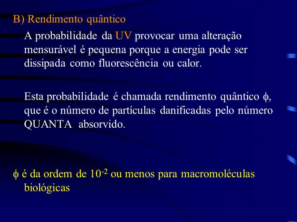 B) Rendimento quântico A probabilidade da UV provocar uma alteração mensurável é pequena porque a energia pode ser dissipada como fluorescência ou calor.