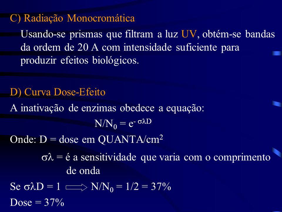 C) Radiação Monocromática Usando-se prismas que filtram a luz UV, obtém-se bandas da ordem de 20 A com intensidade suficiente para produzir efeitos biológicos.