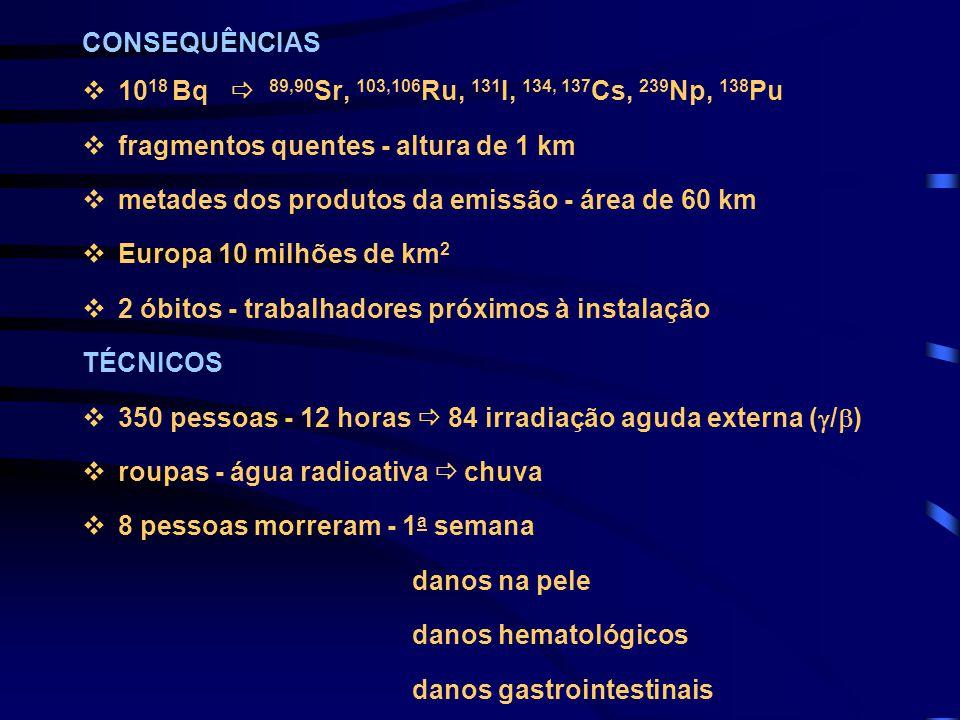 CONSEQUÊNCIAS v10 18 Bq  89,90 Sr, 103,106 Ru, 131 I, 134, 137 Cs, 239 Np, 138 Pu vfragmentos quentes - altura de 1 km vmetades dos produtos da emiss