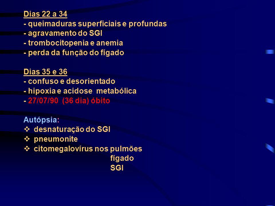 Dias 22 a 34 - queimaduras superficiais e profundas - agravamento do SGI - trombocitopenia e anemia - perda da função do fígado Dias 35 e 36 - confuso