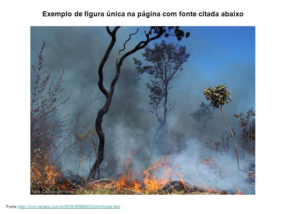 Fonte: EMBRAPA Fonte: Governo Estadual do Piauí Fonte: Mario Barroso / Revista Ciência Hoje Fonte: EMBRAPA Exemplo de quatro figuras na página com fonte citada abaixo de cada uma