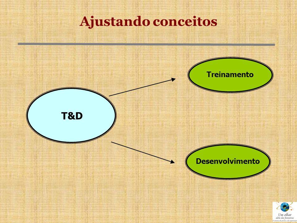 CONCLUSÕES  O processo de T&D das pessoas deve ser encarado como fundamental para o desenvolvimento da organização.
