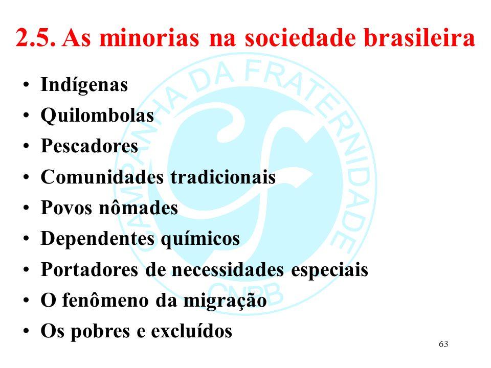 2.5. As minorias na sociedade brasileira Indígenas Quilombolas Pescadores Comunidades tradicionais Povos nômades Dependentes químicos Portadores de ne