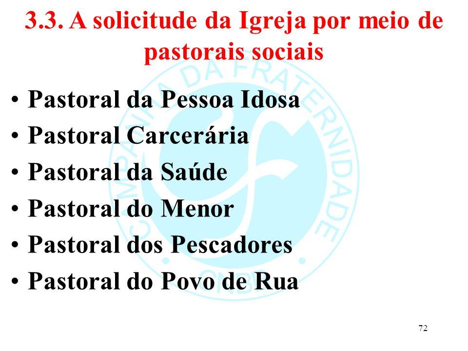3.3. A solicitude da Igreja por meio de pastorais sociais Pastoral da Pessoa Idosa Pastoral Carcerária Pastoral da Saúde Pastoral do Menor Pastoral do