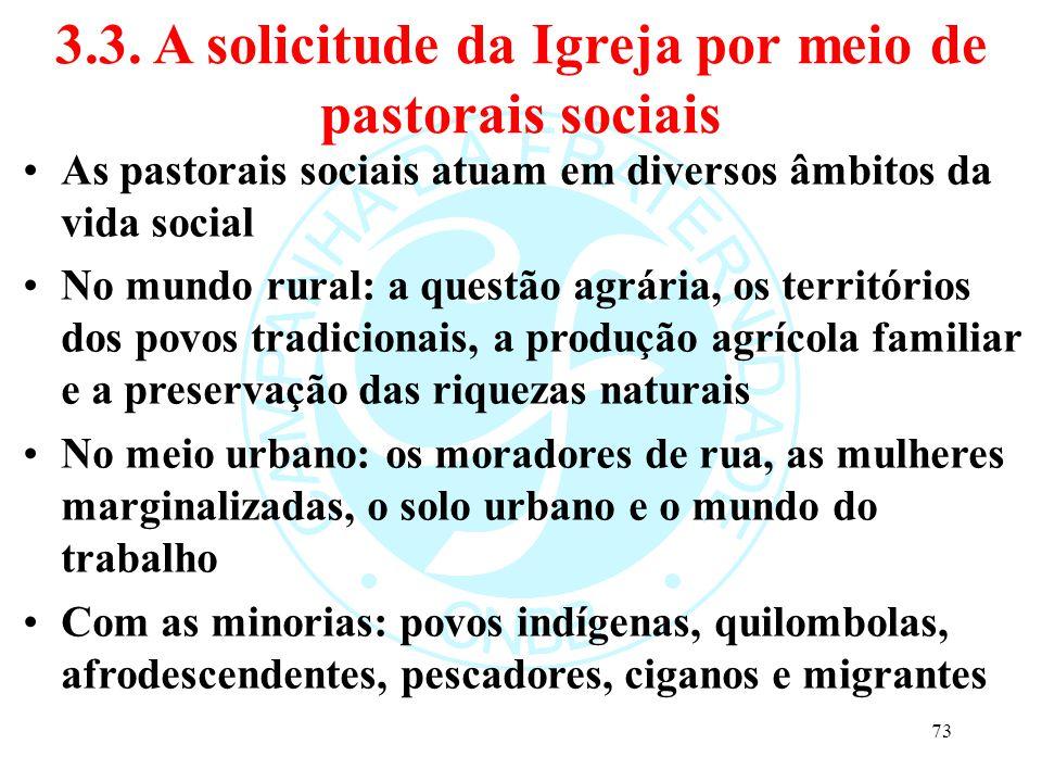 3.3. A solicitude da Igreja por meio de pastorais sociais As pastorais sociais atuam em diversos âmbitos da vida social No mundo rural: a questão agrá