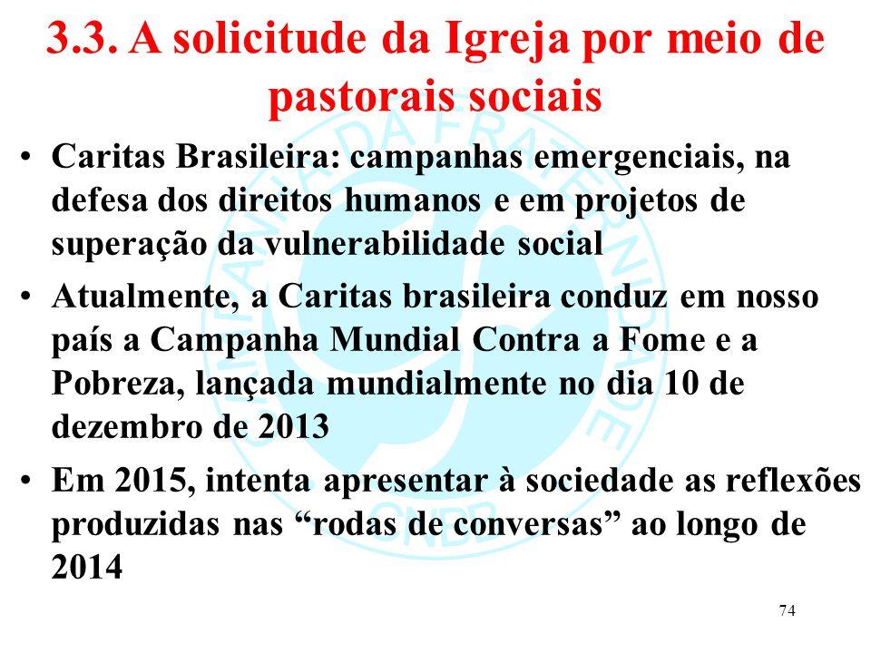 3.3. A solicitude da Igreja por meio de pastorais sociais Caritas Brasileira: campanhas emergenciais, na defesa dos direitos humanos e em projetos de