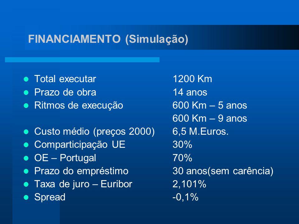 Total executar1200 Km Prazo de obra14 anos Ritmos de execução600 Km – 5 anos 600 Km – 9 anos Custo médio (preços 2000)6,5 M.Euros. Comparticipação UE3