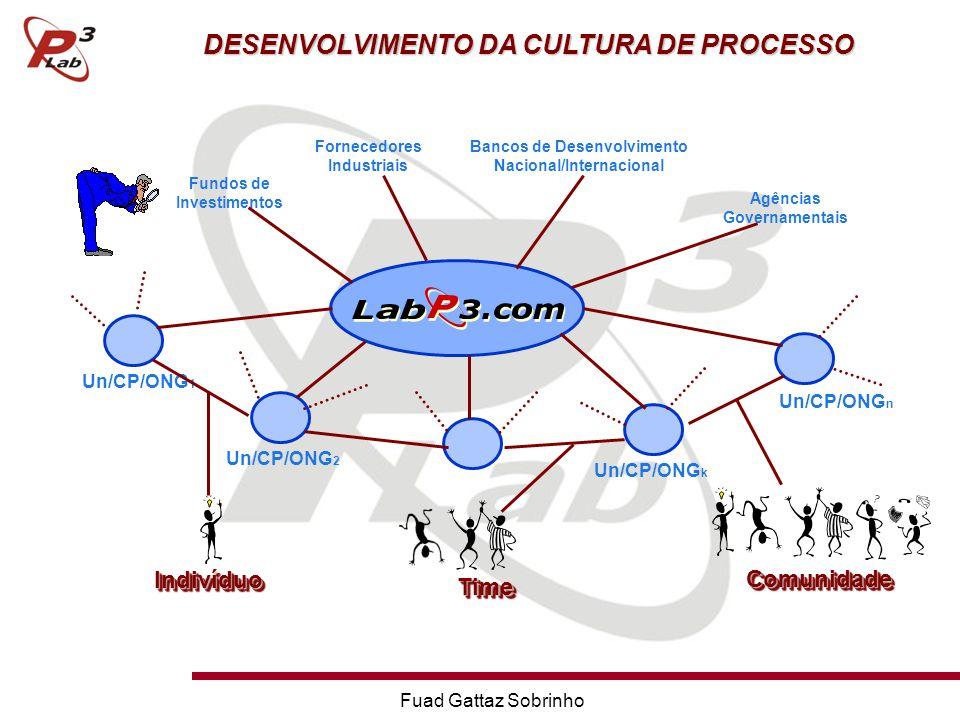 Fuad Gattaz Sobrinho Un/CP/ONG 1 Un/CP/ONG 2 Un/CP/ONG k Un/CP/ONG n Fundos de Investimentos Fornecedores Industriais Bancos de Desenvolvimento Nacional/Internacional Agências Governamentais IndivíduoIndivíduo TimeTime ComunidadeComunidade DESENVOLVIMENTO DA CULTURA DE PROCESSO