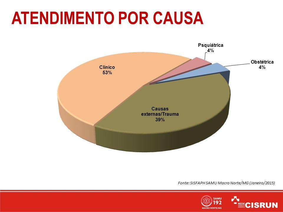 ATENDIMENTO POR CAUSA Fonte: SISFAPH SAMU Macro Norte/MG (Janeiro/2015)