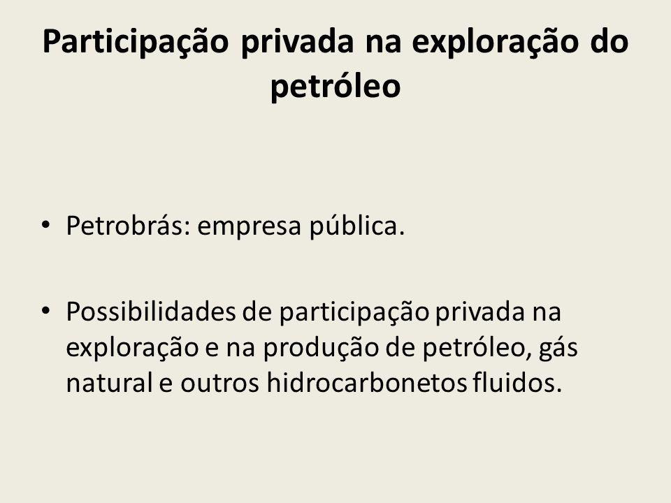Participação privada na exploração do petróleo Petrobrás: empresa pública. Possibilidades de participação privada na exploração e na produção de petró