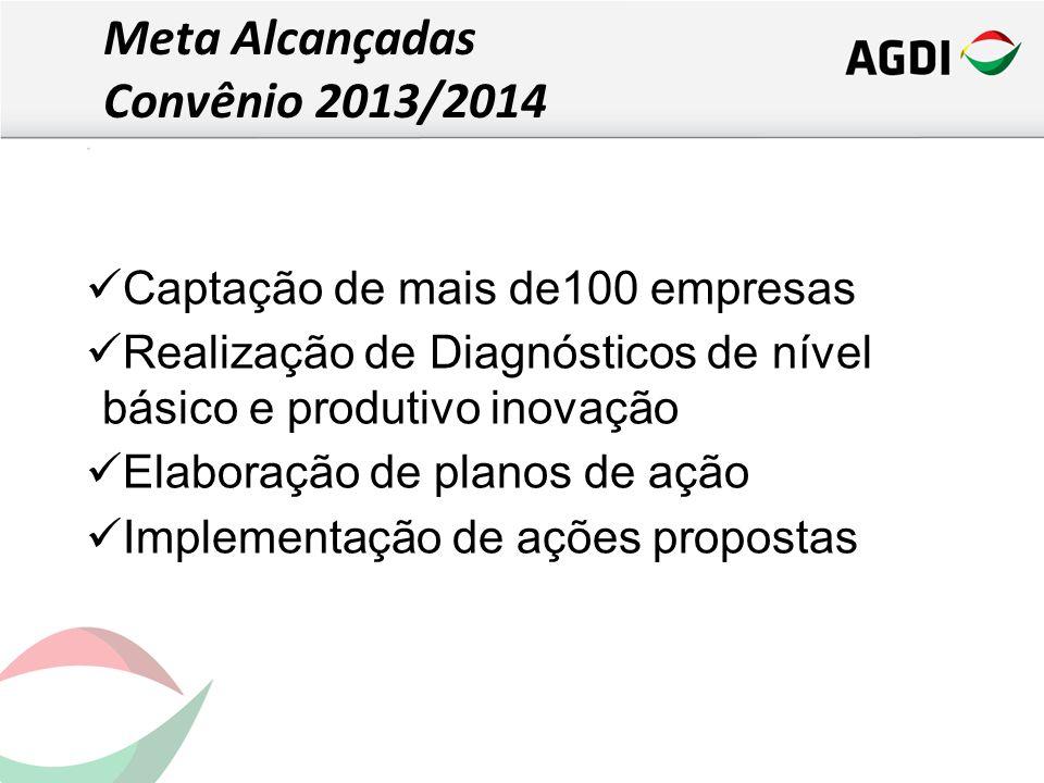Captação de mais de100 empresas Realização de Diagnósticos de nível básico e produtivo inovação Elaboração de planos de ação Implementação de ações propostas Meta Alcançadas Convênio 2013/2014
