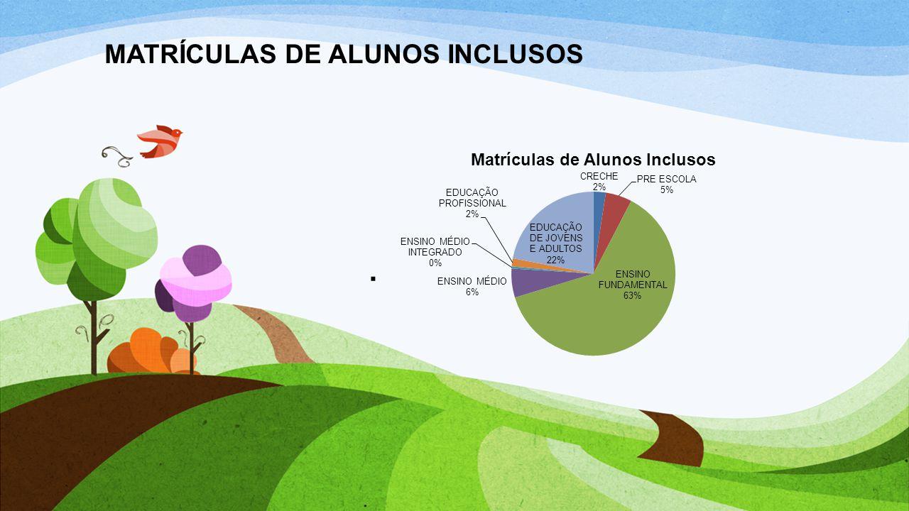 MATRÍCULAS DE ALUNOS INCLUSOS.