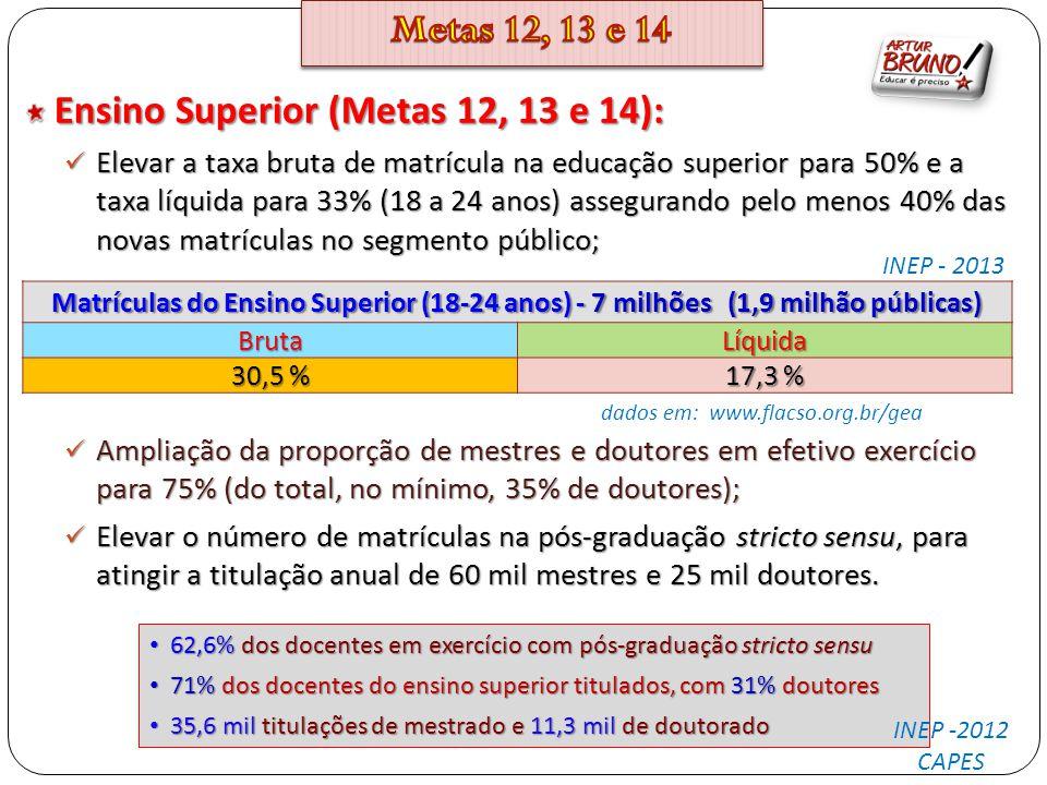 Ensino Superior (Metas 12, 13 e 14): Elevar a taxa bruta de matrícula na educação superior para 50% e a taxa líquida para 33% (18 a 24 anos) asseguran