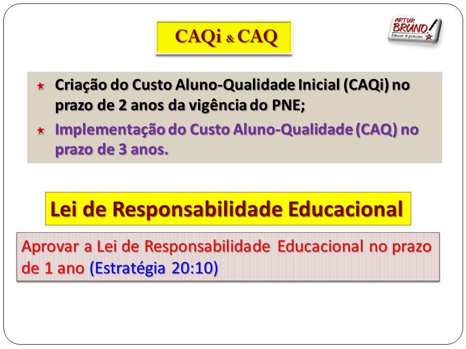 Criação do Custo Aluno-Qualidade Inicial (CAQi) no prazo de 2 anos da vigência do PNE; Implementação do Custo Aluno-Qualidade (CAQ) no prazo de 3 anos