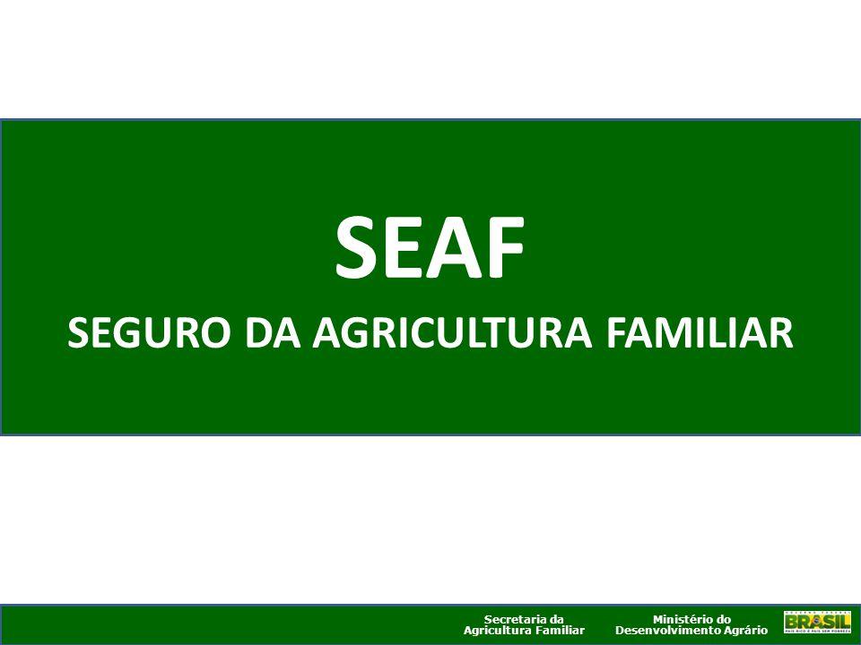 Ministério do Desenvolvimento Agrário Secretaria da Agricultura Familiar SEAF SEGURO DA AGRICULTURA FAMILIAR Ministério do Desenvolvimento Agrário Sec