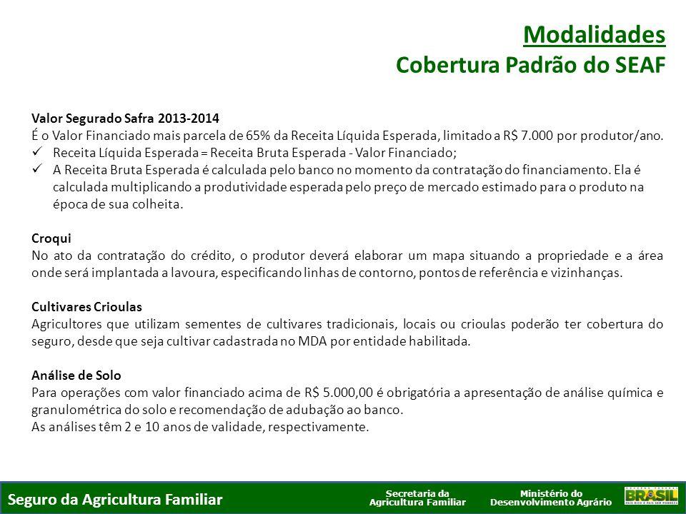 Ministério do Desenvolvimento Agrário Secretaria da Agricultura Familiar SEGURO DA AGRICULTURA FAMILIAR Valor Segurado Safra 2013-2014 É o Valor Finan