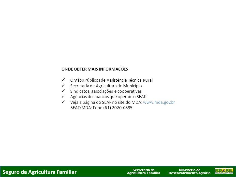 Ministério do Desenvolvimento Agrário Secretaria da Agricultura Familiar SEGURO DA AGRICULTURA FAMILIAR ONDE OBTER MAIS INFORMAÇÕES Órgãos Públicos de