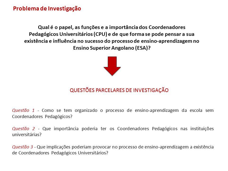 Problema de Investigação QUESTÕES PARCELARES DE INVESTIGAÇÃO Qual é o papel, as funções e a importância dos Coordenadores Pedagógicos Universitários (
