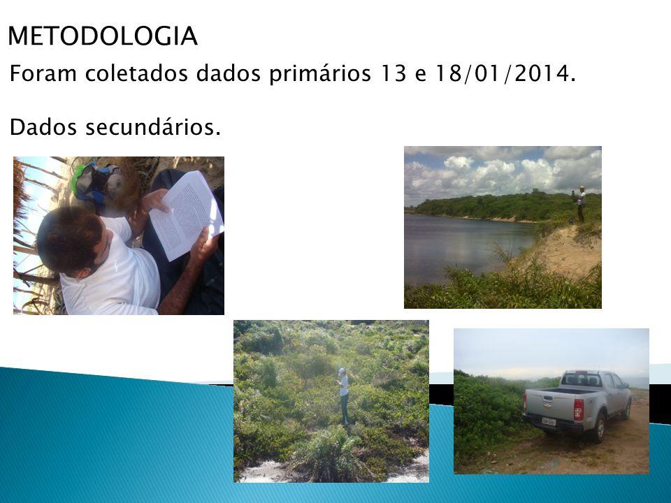 METODOLOGIA Foram coletados dados primários 13 e 18/01/2014. Dados secundários.