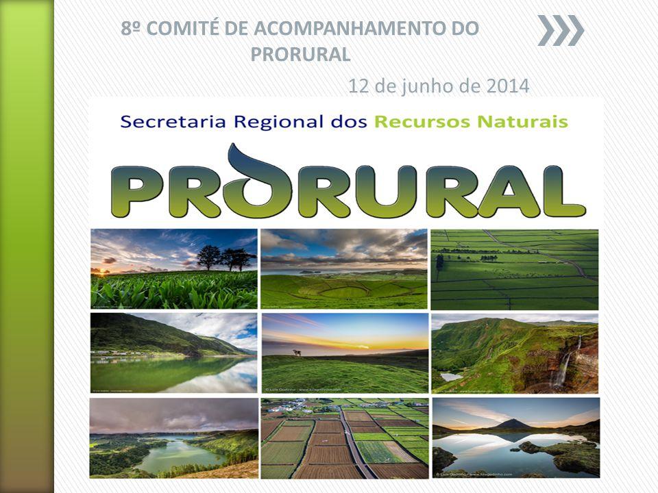 3. Análise e Aprovação do Relatório de Execução Relativo ao Ano de 2013